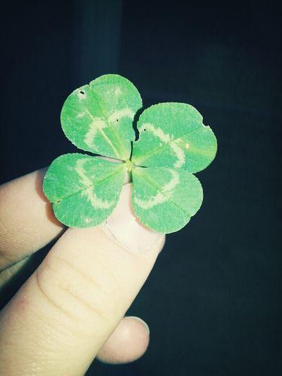 Luck Of The Irish :)
