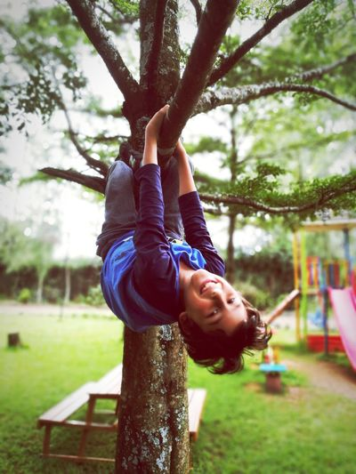 handsome boy hanging from a tree branch Holiday EyeEm Selects Tree Child Childhood Smiling Togetherness Climbing Happiness Males  Boys Hanging Outdoor Play Equipment Climbing Equipment