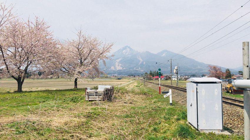 磐梯山 Mountain Sky Plant Day Nature Beauty In Nature Tree