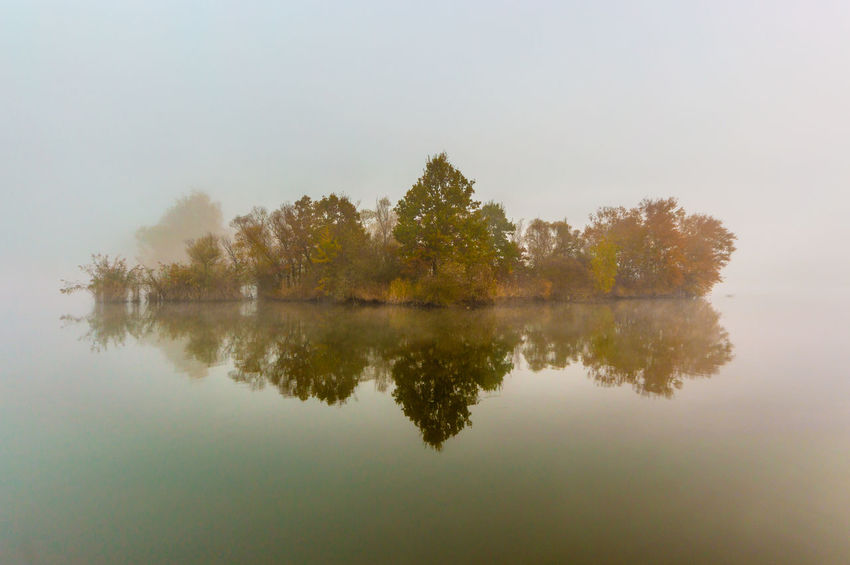 misty autumn morning Reflection Tree Water Plant Lake Tranquility Waterfront Tranquil Scene Scenics - Nature Beauty In Nature Nature Sky No People Fog Symmetry Day Idyllic Outdoors Growth