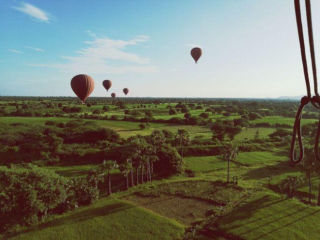 Ballon Hot Air Balloon Sunlight Cloud - Sky Sky Flying Day Outdoors