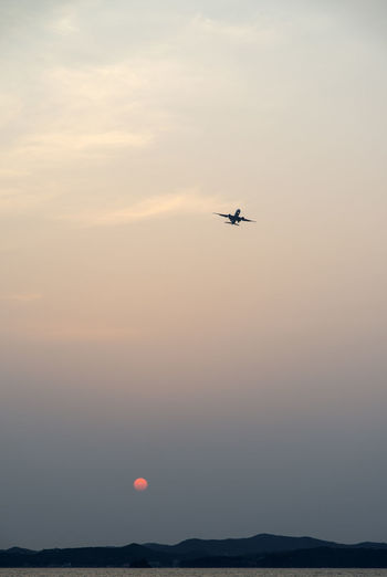 Low Angle View Of Airplane Flying Over Sea During Sunset