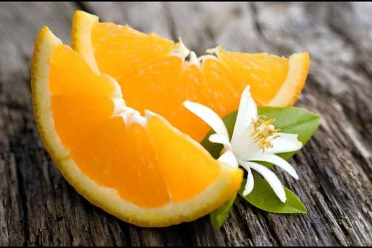 Orange Orange Flower Hello World
