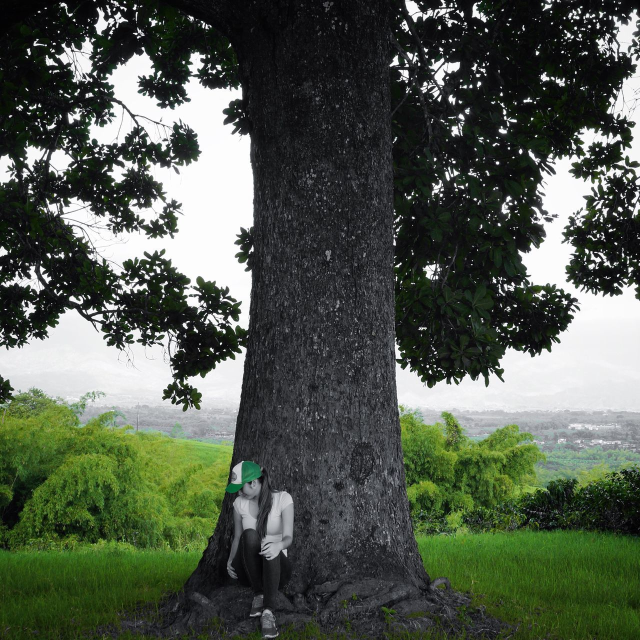 tree, tree trunk, growth, day, outdoors, nature, men, one person, full length, real people, green color, standing, grass, sitting, one man only, landscape, sky, branch, beauty in nature, only men, mammal, people