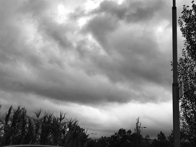 Blackday 😆