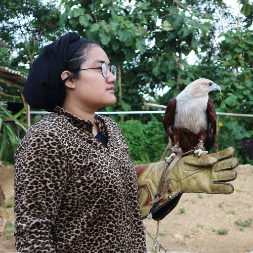 Young woman with hawks on plant