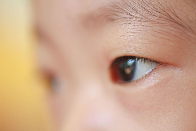 Close-up portrait of baby eye