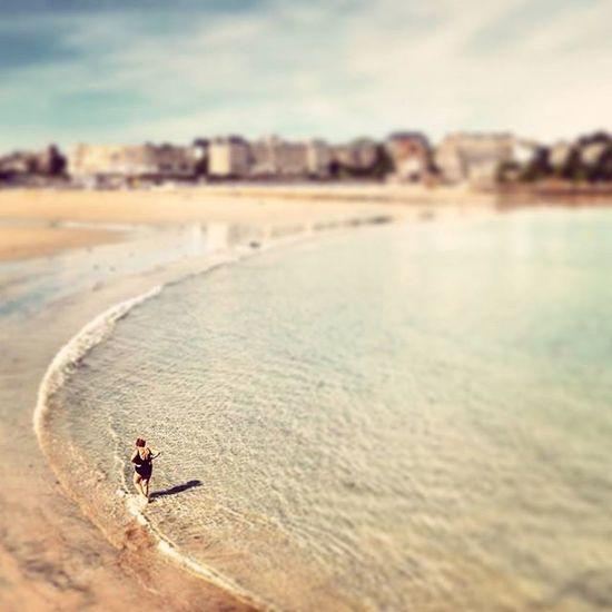 Seule sur la plage 🌊🐚 Nikonfr Igersfrance Igersbretagne Saintmalo Dinard Bretagne Bretagnetourisme Picsoftheday Coeurpostal Beach Sun Plage Tiltshift Belambrawards Cartepostale