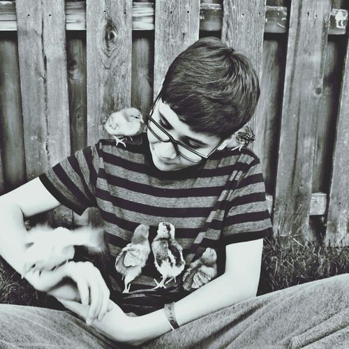 Teenage Boy Playing With Baby Chicken While Sitting Against Fence