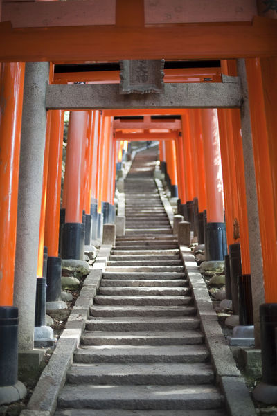 Torii gates forming a tunnel over a hillside walkway donated as votive offerings by the locals at the Fushimi Inari-taisha, an Inari shrine in Kyoto Architecture Diminishing Perspective Funari Hill Gate In A Row Inari Kyoto No People Offerings Orange Color Red Red Religious  Shrine Steps Steps And Staircases Steps And Stairs Stepside Temple The Way Forward Torii Gates Tunnel Votive Walkway Worship