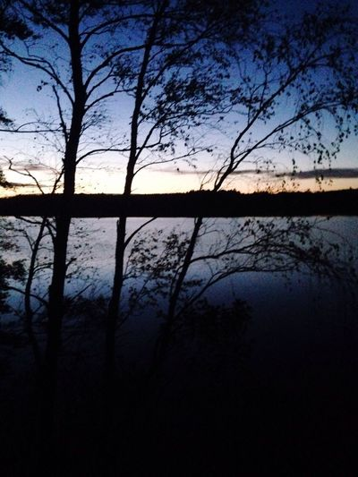 Beauty In Nature Silhouette Tranquil Scene Tranquility Tree Scenics Lake Nature Sunset Branch Water Growth Sky Dark Tree Trunk Blue Calm Outdoors Non-urban Scene Day