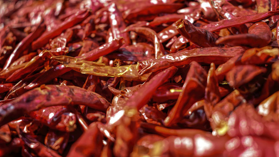Spice of kerala Food And Drink Seafood Food No People Freshness Crustacean Healthy Eating Indoors  Close-up Red Ready-to-eat Day Red Chili Pepper Spices Of The World EyeEmNewHere EyeEmNewHere