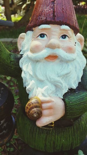Hanging out with the local Gnome. 😄 Outdoors Day Close-up Nature My Photography Snail Shells EyeEm Best Shots EyeEm Nature Lover In My Neighborhood Photography Popular Photos Beauty In Nature Gastropod Animal Themes Gnomes On My Street Colorful No People