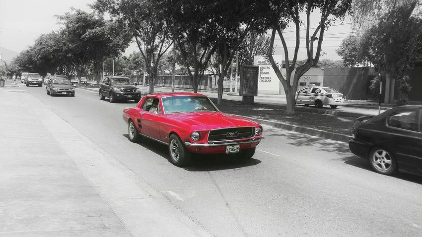 Just re-uploading it because I saw a few inconsistencies in the b&w part, but they're already fixed 👻 Mustang Classic Red Paint Shiny Power Horse Power Speed Road Focus Contrast Racing Car Cars Beauty Wheel Endurance Fast Wheels Bright Perspective Precise Urban Showcase March First Eyeem Photo