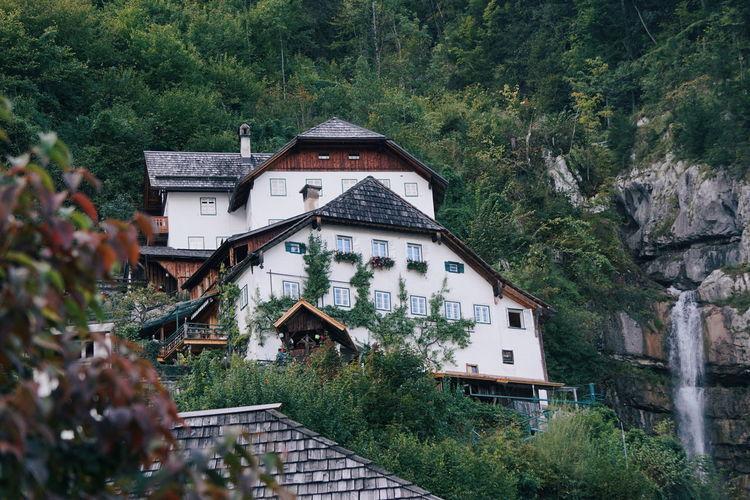 Houses amidst trees on mountain