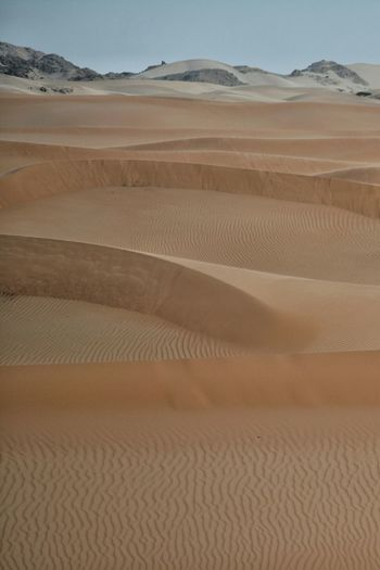 Desert Beauty Land Nature Simple Oman Landscape_Collection Lines Desert Noone Golden