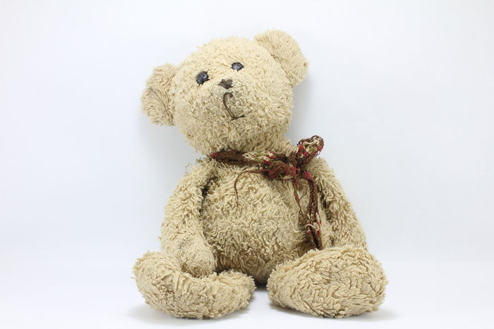 Teddy bear on a white background. Teddy Bear On A White Background.
