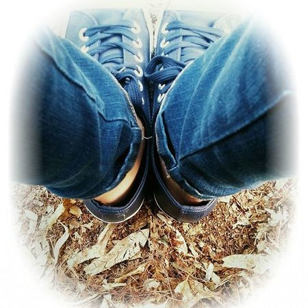 🍃 Leaf Leafs i Love Autumn Autunno  Autunno2015 Jeans Blue Converse at Work First Week Soymix