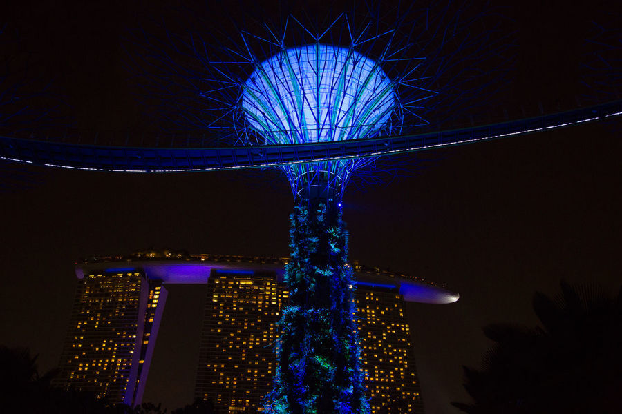 Gardens By The Bay Marina Bay Sands Amusement Park Amusement Park Ride Architecture Blue Building Exterior Built Structure City Decoration Financial District  Illuminated Lighting Equipment Low Angle View Nature Night No People Office Building Exterior Outdoors Sky Skyscraper Tall - High Travel Destinations Tree