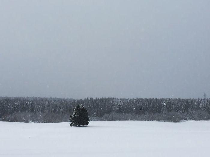 Einsamer Emil Winter Wonderland Königsfeld Wanderlust Snow ❄