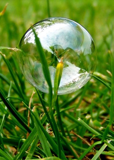 Bubble in the