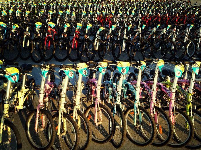 單車閱兵 Collected Community