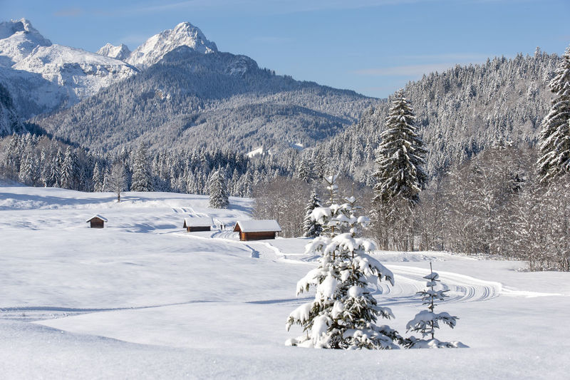 rural landscape in Bavaria at winter Winter Cold Temperature Nature Outdoors Bavaria Snow Covered Snow No People Tranquility Tranquil Scene Scenics Scenics - Nature Scenery Scenic Rural Scene Rural Non-urban Scene Copy Space Mountain Land Landscape Powder Snow Environment Tree Beauty In Nature Snowcapped Mountain