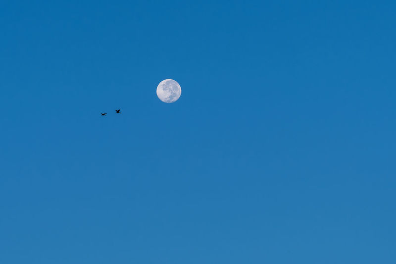 Low angle view of moon against clear blue sky