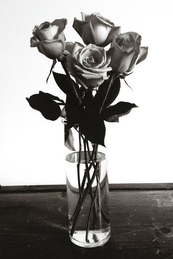 Roses Roses🌹 Rose🌹 Flowers Vase Six Half Dozen Blackandwhite Black And White Monochrome Love Petals Leaves Stems Contrast Showing Imperfection Rustic Scratched Wood Worn Out Old Monochrome Photography Valentine's Day  Valentine