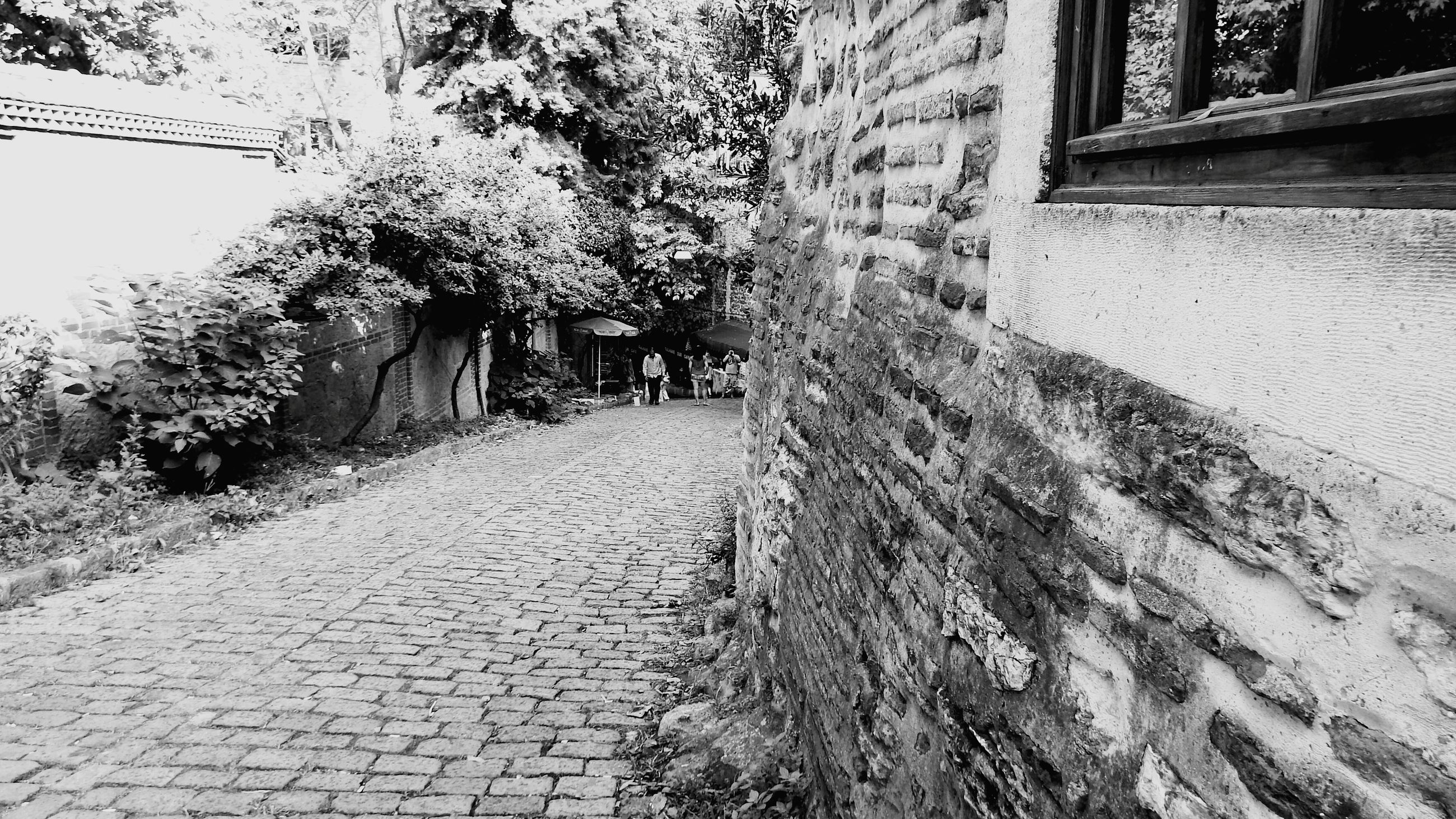 the way forward, diminishing perspective, building exterior, built structure, architecture, vanishing point, street, narrow, tree, long, footpath, transportation, road, pathway, cobblestone, house, walkway, empty, outdoors, day
