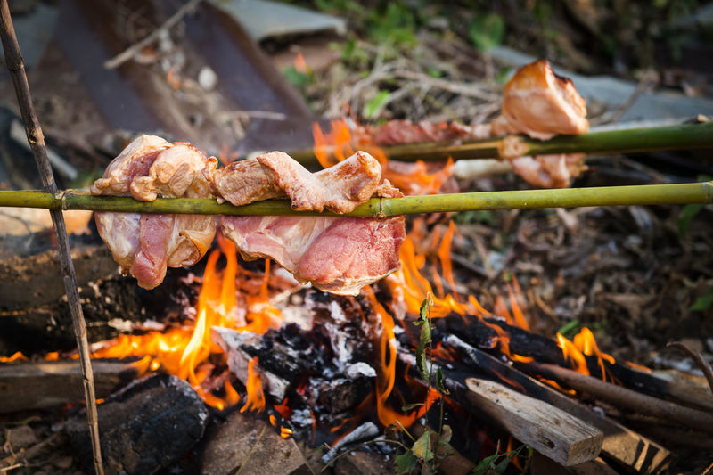 Close-up of pork cooking on bonfire