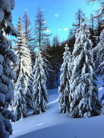 Paesaggio Montagne Neve Raggi Di Sole First Eyeem Photo