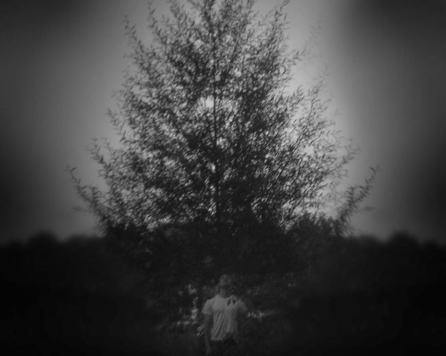 Dark Tree Beauty In Nature Clear Sky Dark Photography Darkart Day Grass Growth Mistery Nature Outdoors Pinhole Pinhole Photography Real People Sky Tree