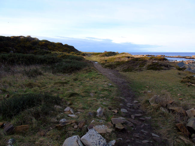 Coastal track around the beaches Beauty In Nature Cloud Cloud - Sky Coastline Day Eye Em Scotland Grass Horizon Over Water Idyllic Landscape Nature No People Non-urban Scene Outdoors Remote Rock Rock - Object Rock Formation Scenics Scotland Sky Tranquil Scene Tranquility Uk Water