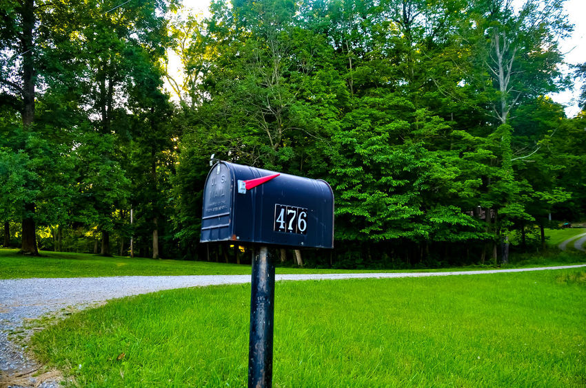 Day Close-up Outdoors Mailbox Tree