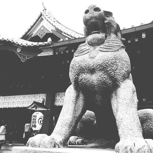 Japan Akihabara Ochanomizu 神田明神 Lovelive ラブライブ! Japanese Shrine Shrine Iphone6