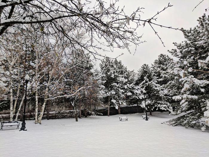 Landscape Upstatenewyork Outdoor Photography Outdoors Optoutside Winter Snow Cold Temperature