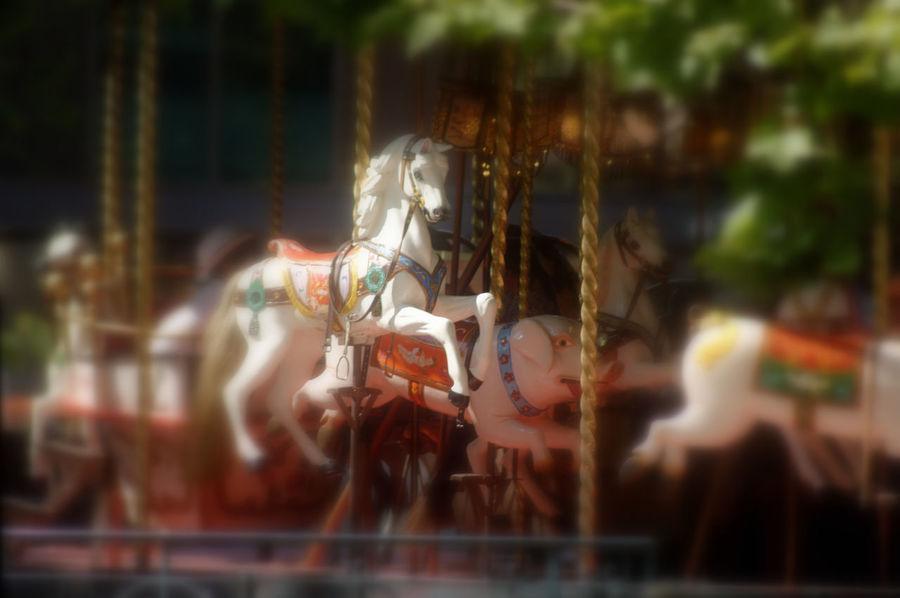 Carrousel Chevaux De Bois Enjoying Life Manège  Summertime Wood Horses
