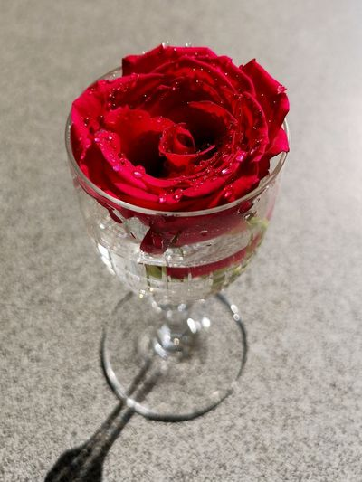 Flowering Plant Love Plant Red Temptation Beauty In Nature Close-up Flower Flower Head Focus On Foreground Freshness Glass Glass - Material Petal Red Rose Rose Flower Still Life Table Vulnerability
