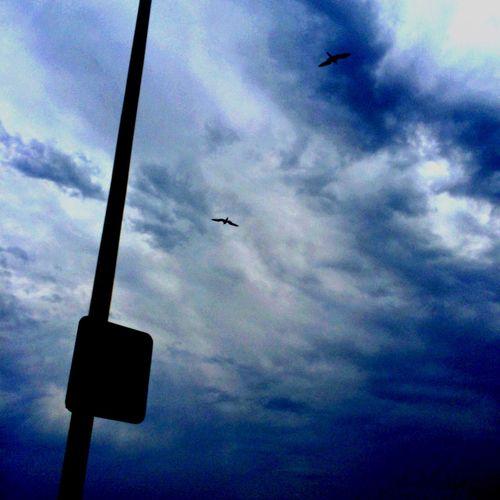 Rio-Niterói Bridge Blue Sky but actually Gray Sky