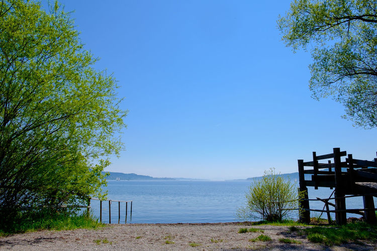 Sea Beach Water Nature Sky Tree Blue Day Outdoors Tranquility Bodensee Clear Sky Growth Scenics Lake Of Constance Germany Beauty In Nature No People Tranquil Scene Horizon Over Water
