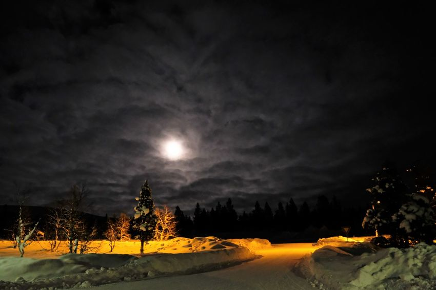 Astronomy Beauty In Nature Cold Temperature Illuminated Landscape Moon Nature Night No People Outdoors Scenics Sky Snow Tranquil Scene Tranquility Tree Weather Winter