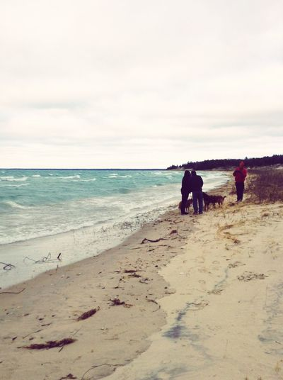Beautiful Beaches Lake Michigan Walking On The Beach Walking The Dogs Couples Waves, Ocean, Nature The KIOMI Collection