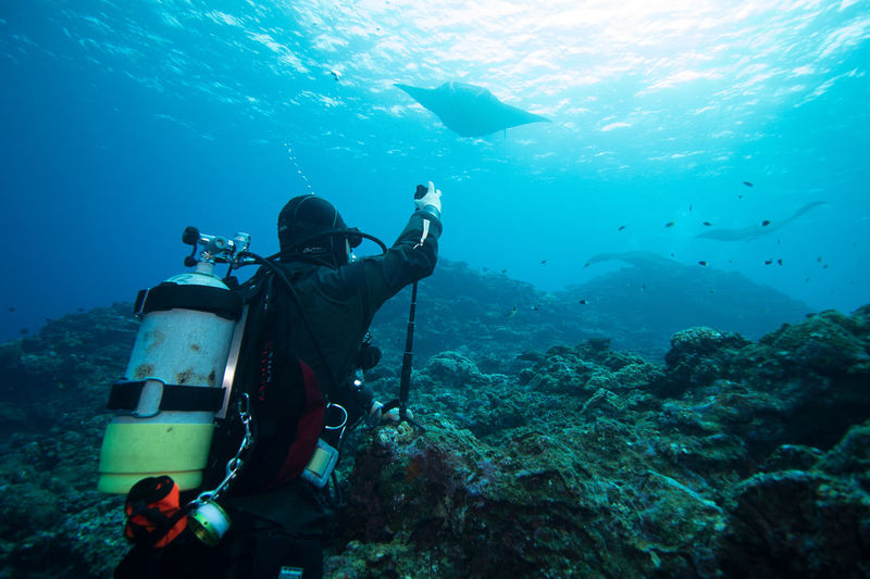 underwater adventure Adrenaline Adventure Amazing View Aqualung - Diving Equipment Day Exploration Extreme Sports Full Length Leisure Activity Men Nature One Person Outdoors People Photography Themes Real People SCUBA Scuba Diver Scuba Diving Sea Sea Life Take Picture UnderSea Underwater Water
