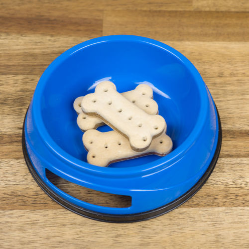 Bones Dog Bowl Dog Food Square Animal Food Blue Bowl Bowling Chewing Chewing Bone Close-up Cookie Day Dogs Bowl Dogs Food Food Food And Drink Freshness High Angle View Indoors  Plate Ready-to-eat Sweet Food Table Treat