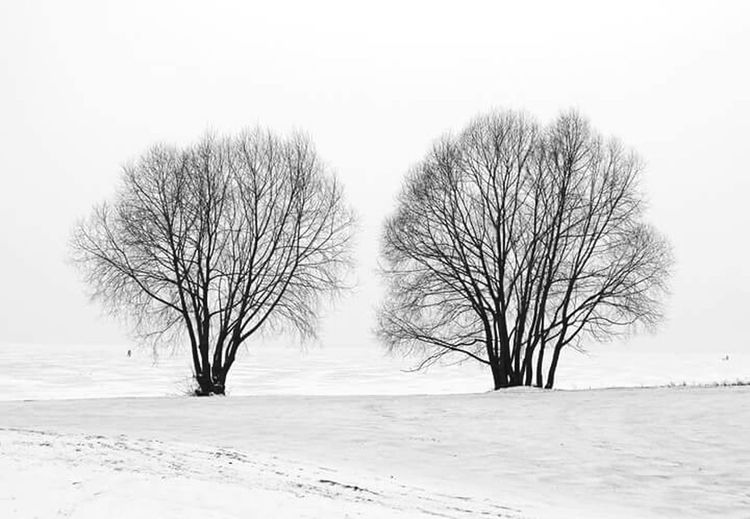 The Great Outdoors - 2017 EyeEm Awards Landscape Snow Winter Frozen Outdoors Tree Nero Lake Two Blackandwhite Blackandwhitephotography Blac&white  Black & White Photography The Great Outdoors - 2018 EyeEm Awards