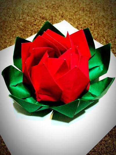 Myself Flower Flowers 作った Origami