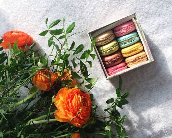 Macaroons French Sweet Flowers Spring Orange Colorful Foodporn French Food Dessert Gift Surprise Romantic Chic Food Photography Simplicity Details Chill Mode