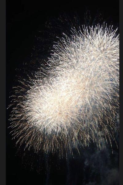 和歌山マリーナシティー Wakayama Enjoying Life EyeEm Best Shots White Flower Night View Fireworks
