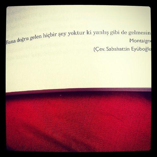 Hayat felsefemi buldum :)) Montaigne